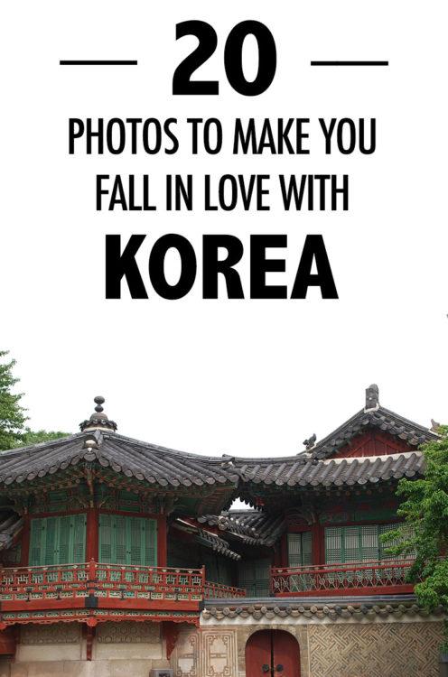 fall-in-love-with-korea-pin