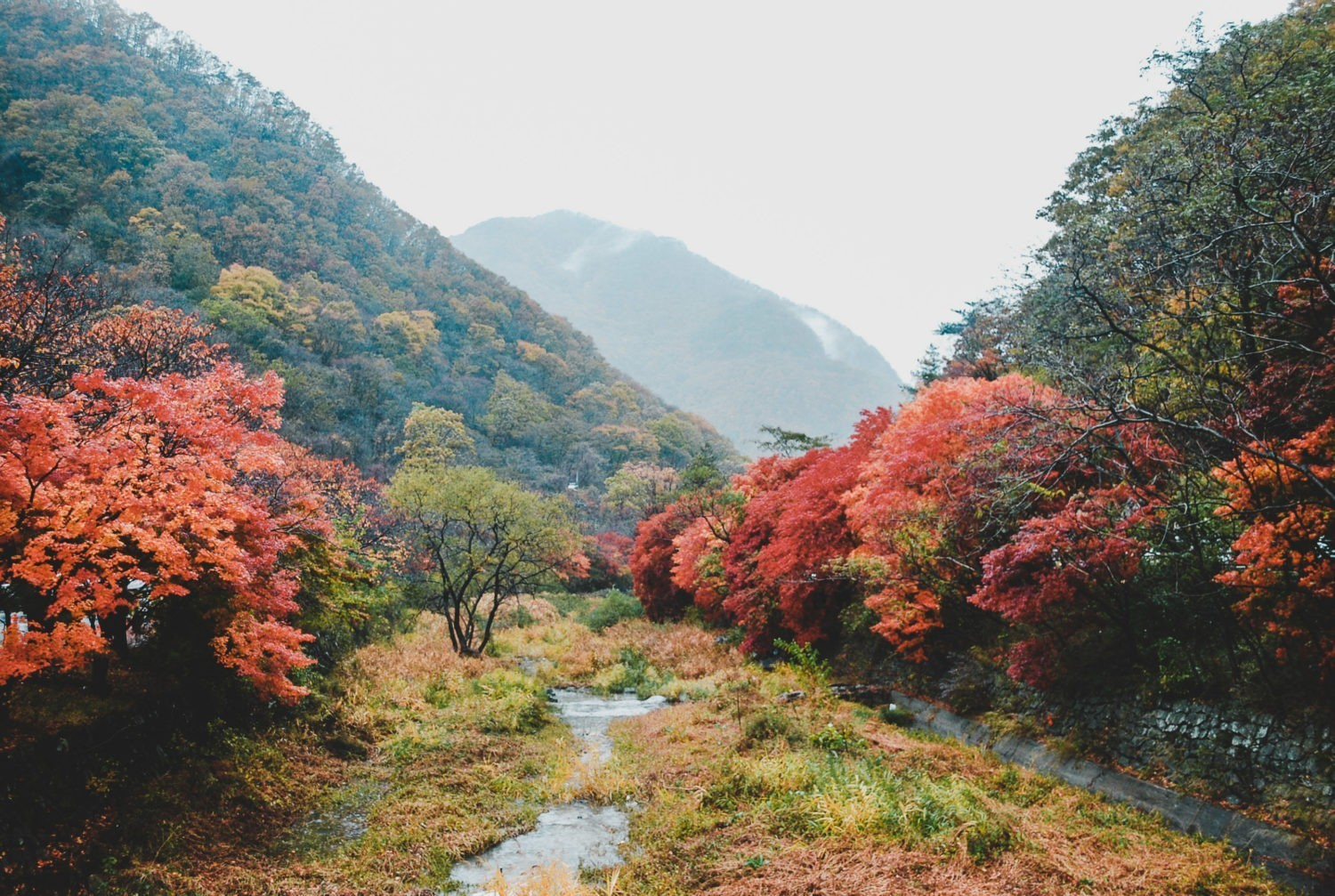Places to see fall foliage in korea pin there she goes again for Best fall destinations in the us