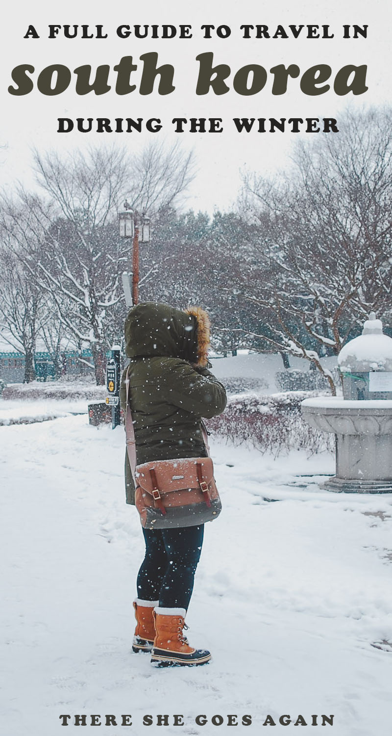 a guide to winter in korea survival tips there she goes. Black Bedroom Furniture Sets. Home Design Ideas