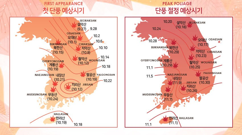 Foliage Map New York 2017.Autumn In Korea 2019 Forecast Food Festivals And More There