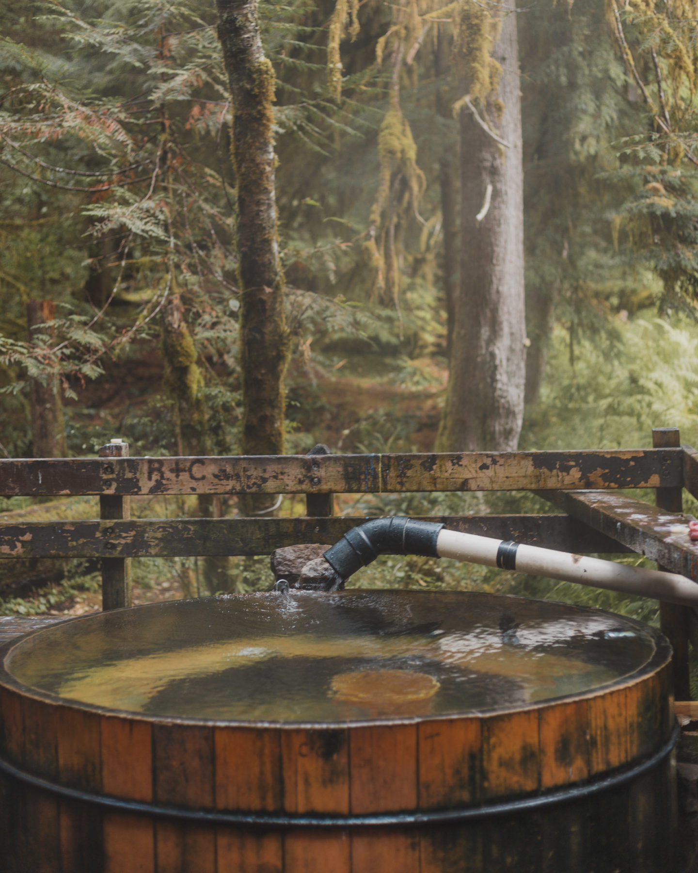 The Bagby Hot Springs Hike: Relaxation You Have to Work for
