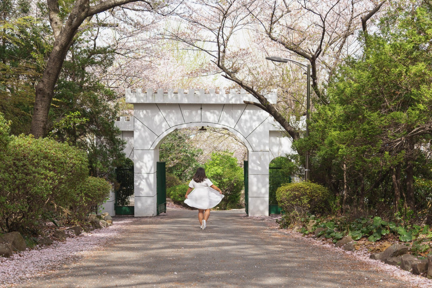 Spring in Korea: Top Tips and Things to Do – There She Goes